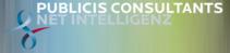 Publicis Consultatnts Net Intelligenz