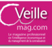 Veille, le magazine des professionnels de l'information stratégique