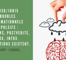 15h30/16h15 - Troubles informationnels compulsifs : Fake-News, Postverité, intox, infox. Les solutions existent.